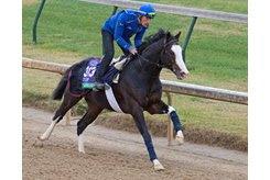 Talismanic gallops Oct. 29 at Churchill Downs