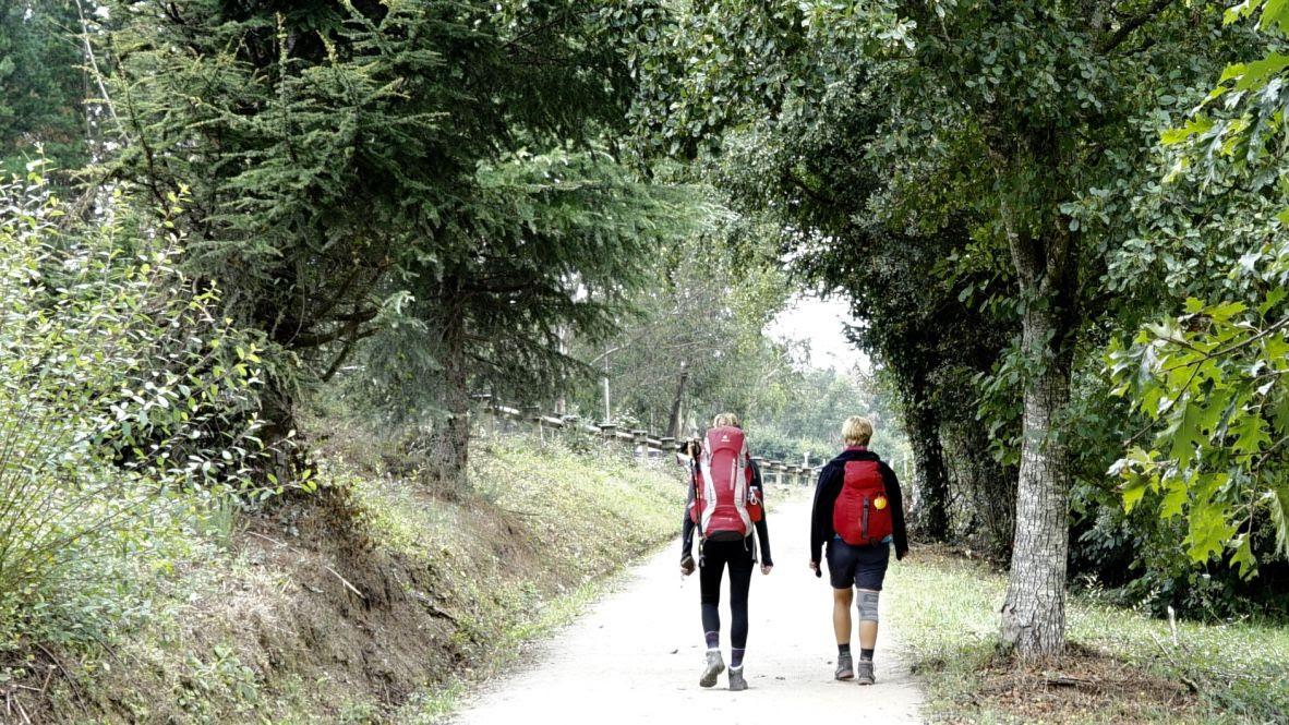 Beneficios terapéuticos del Camino de Santiago