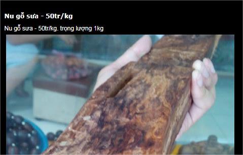 Tại sao gỗ nu lại đắt gấp nhiều lần gỗ sưa, dù nó chỉ là phần dị tật xấu xí? - Ảnh 3.
