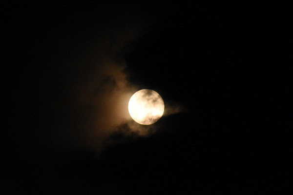 eb7abb55d780 Εύβοια 24 Ώρες – Όλα τα νέα της Χαλκίδας  Το ανησυχητικό φαινόμενο με τις  νύχτες στην Ελλάδα