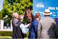 Study of Man surrounded by his connections after winning the Prix du Jockey Club at Chantilly