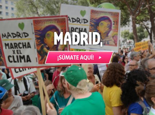 https://secure.avaaz.org/es/event/globalclimatemarch/Marcha_Mundial_por_el_Clima_Madrid?cl=8894509381&v=67711