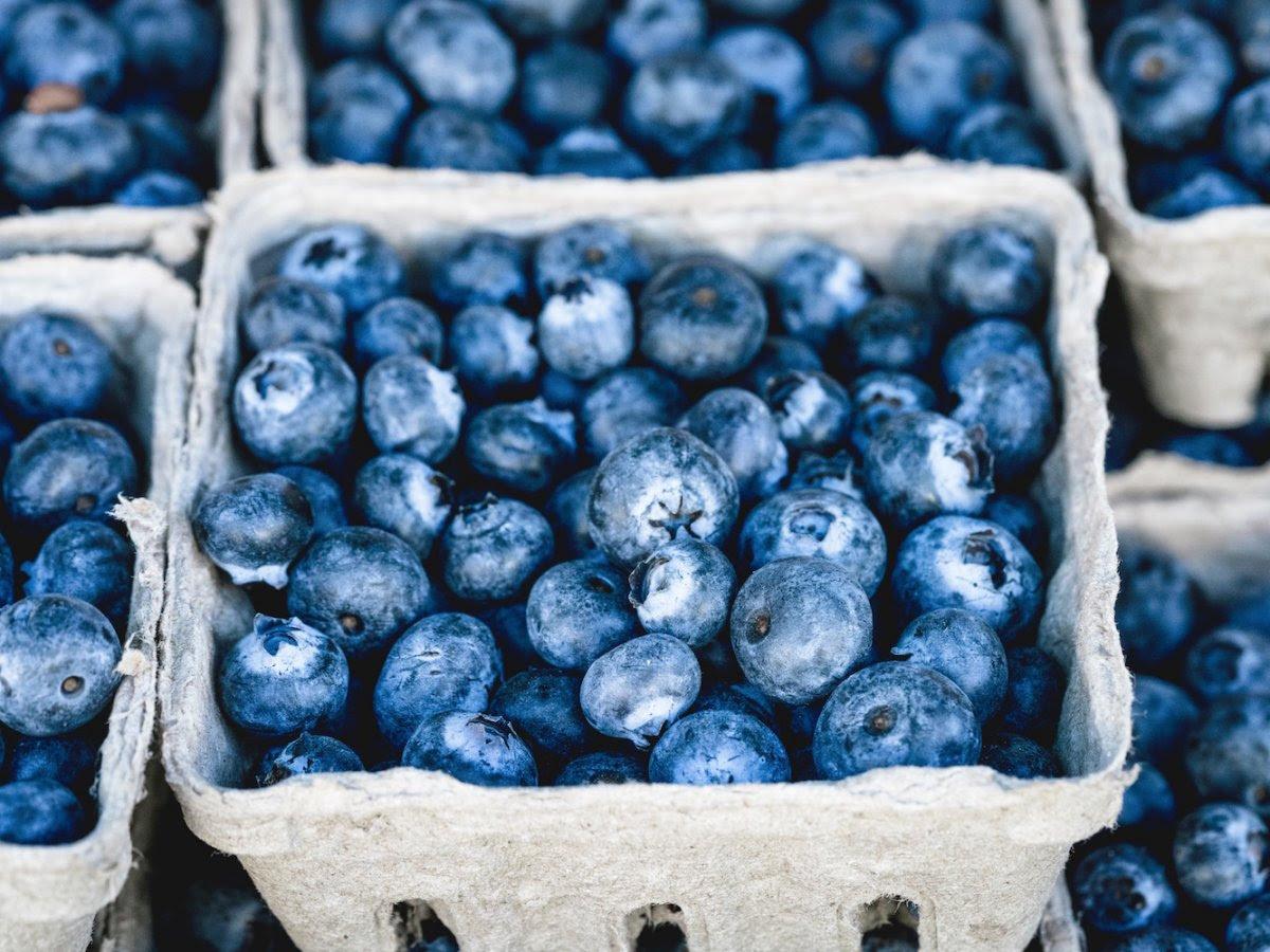 10 loại thực phẩm bổ dưỡng nhất cho mắt người làm việc máy tính