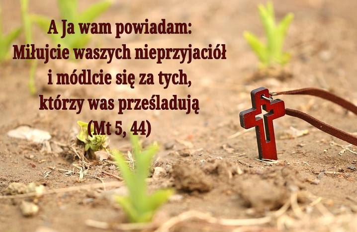 Znalezione obrazy dla zapytania: Będziesz miłował swego bliźniego†, a nieprzyjaciela swego będziesz nienawidził. A Ja wam powiadam: Miłujcie waszych nieprzyjaciół i módlcie się za tych, którzy was prześladują, abyście się stali synami Ojca waszego, który jest w niebie; ponieważ On sprawia, że słońce Jego wschodzi nad złymi i nad dobrymi, i On zsyła deszcz na sprawiedliwych i niesprawiedliwych. Jeśli bowie