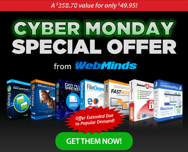 WebMinds Cyber Monday Special Offer
