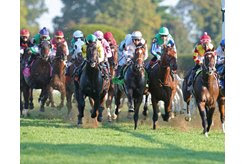 The Bourbon Stakes field races on the turf at Keeneland