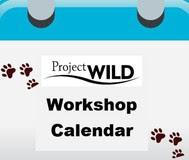 WILD Workshop Calendar Icon