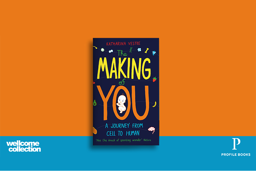 The Making of You book in an orange and blue background.