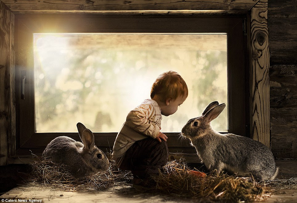 Talking to the animals: Two-year-old Vanya Shumilova locks eyes with a rabbit in this intimate photograph taken by his mother in Andreapol in Russia