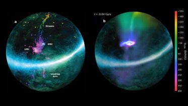 Magellanic Clouds Infall Milky Way