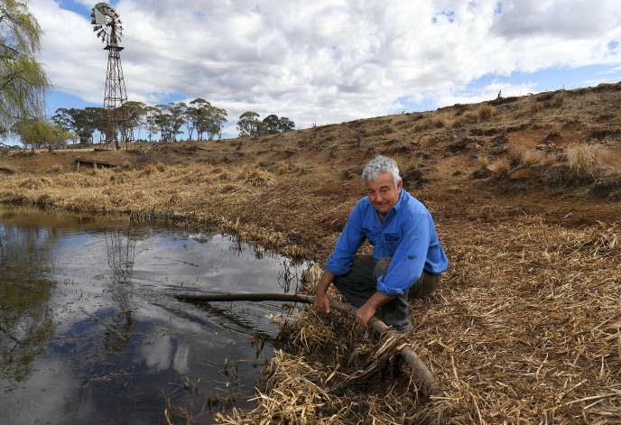 Une fermede la région de la Nouvelle-Galles du Sud,               le 27 août 2019. L'Australie faisait alors face à une               pénurie d'eau sans précédent.