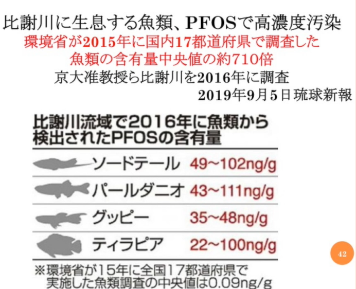 Okinawa_s Fisch _2_.png