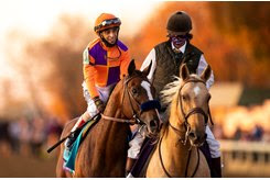 Authentic returns from winning the Breeders' Cup Classic at Keeneland