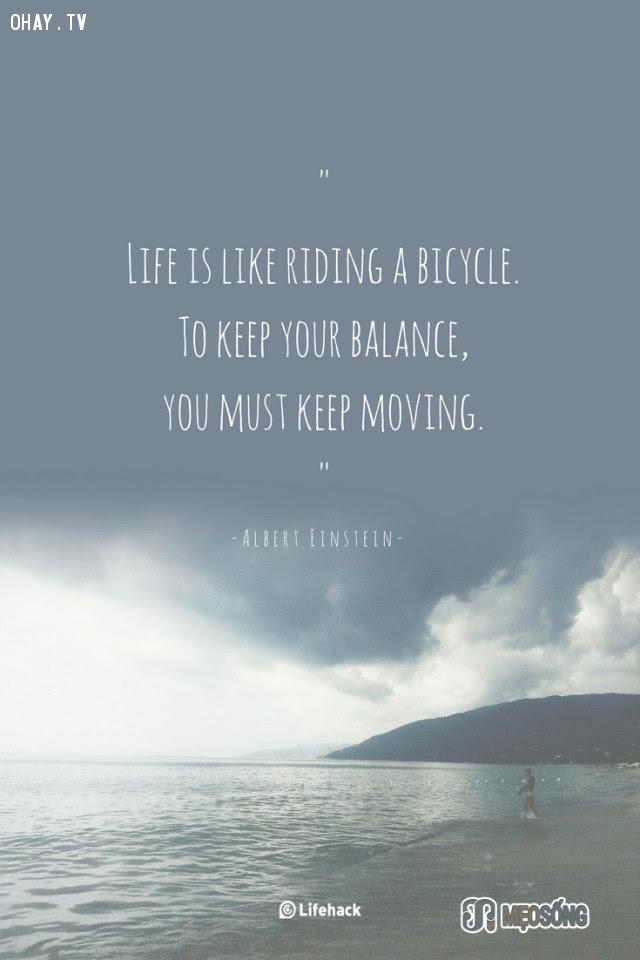 5. Cuộc sống giống như việc đi xe đạp. Để giữ thăng bằng, bạn phải liên tục di chuyển.,albert einstein,câu nói hay,triết lý sống,câu nói ý nghĩa