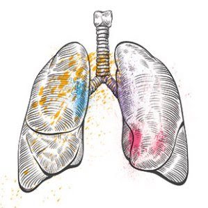 Lungs_147006026