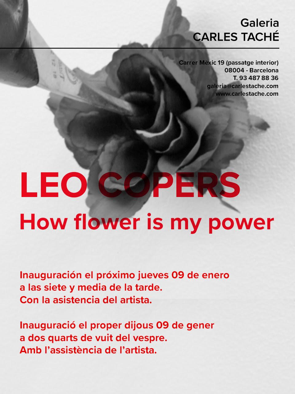 leoCopers