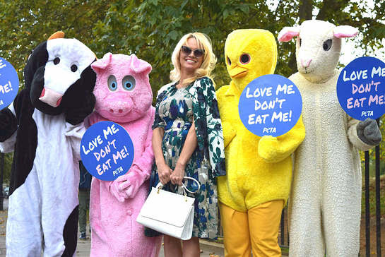 PAMELA ANDERSON JOINS GIANT ANIMAL MASCOTS