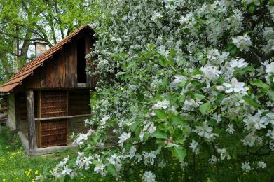Jarní dovolená v Bílých Karpatech - prozkoumejte s námi kraj Žítkovských bohyní