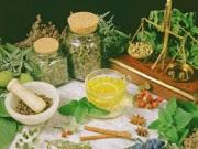 Qual a Função das Plantas Medicinais?