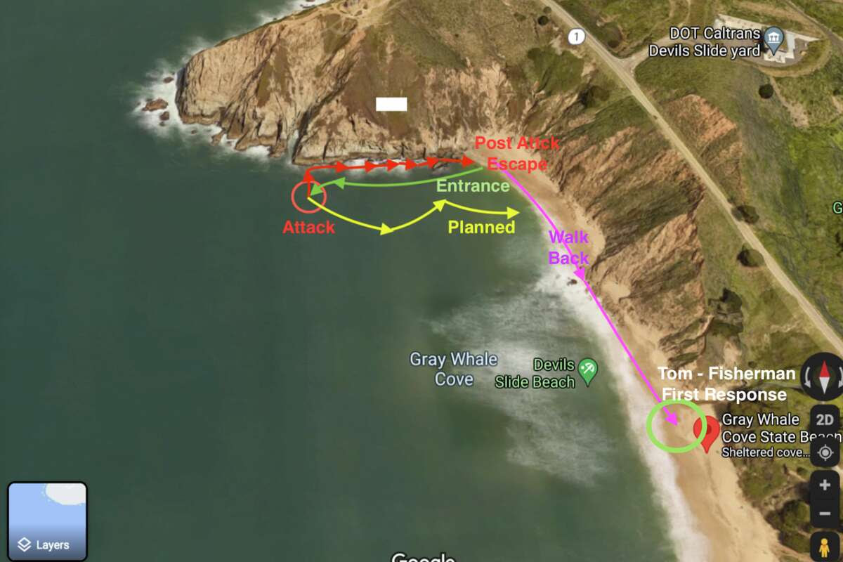 A man was snorkeling off the coast from Gray Whale Cove State Beach, about 18 miles south of San Francisco on the San Mateo County coast, on June 26, 2021, when he encountered a great white shark.