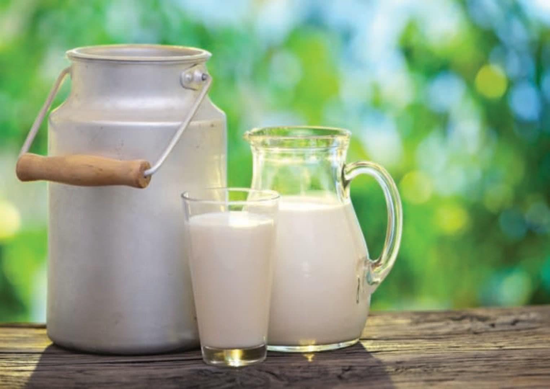 Benefícios e malefícios do leite