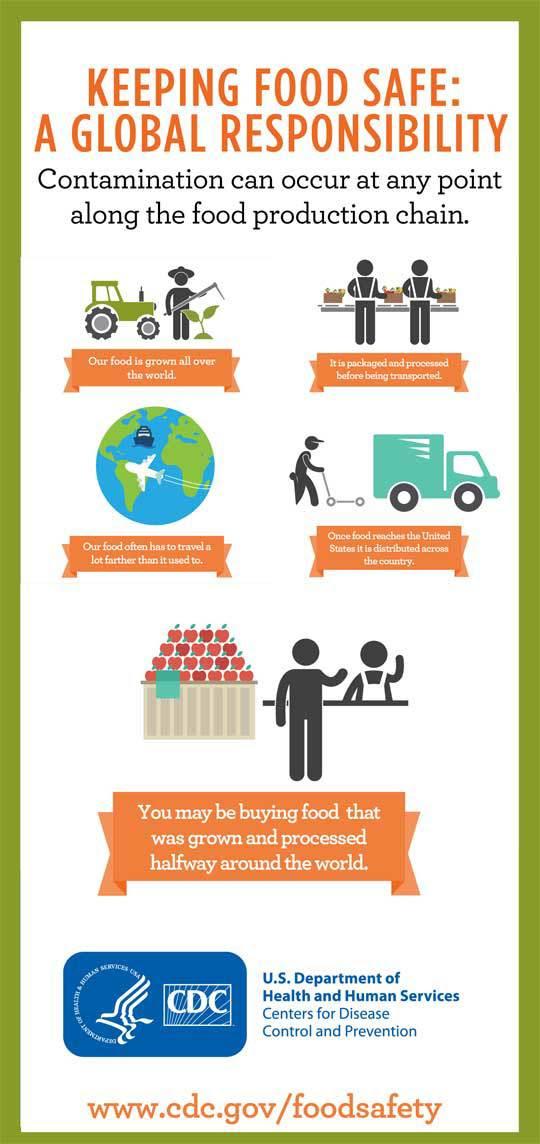 Global food chain illustration.