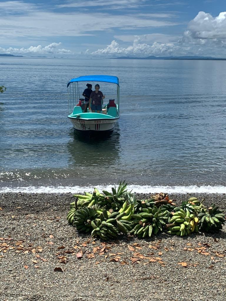 A boat in the water with bundles of bananas on the beach in the foreground