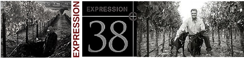 EXPRESSION 38°