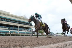 Martini Glass runs by the favored Lewis Bay to score in the Royal Delta Stakes at Gulfstream Park