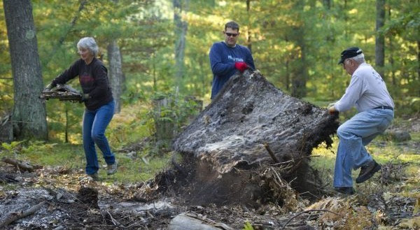 Three volunteers clean up debris from the forest