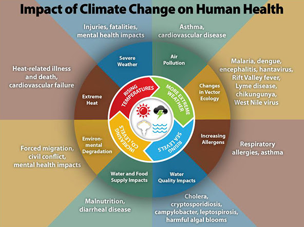 Infographic of the Week: Impact of Climate Change on Human Health