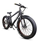 NAKTO Fat Tire Electric Bicycle 300W High Speed Brushless Motor and Detachable Waterproof Lithium Battery Electric Bikes Beach Snow ebike