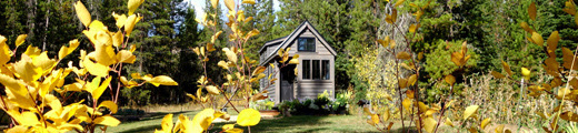 What Can We Learn from the Tiny House Phenomenon?