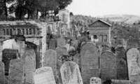 Small blog cemetery