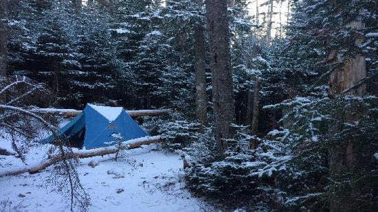 blue tent in snowy forest