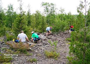 People hunting for Fossils at Rockport State Park.