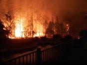 Más de 70 incendios forestales arrasan con miles de hectáreas en Australia.