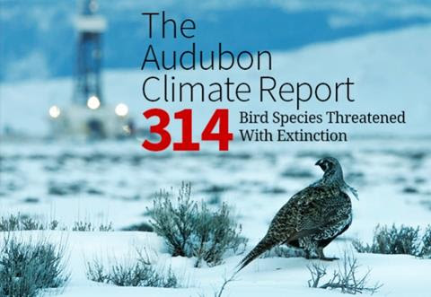 http://www.spnl.org/birds-and-climate-report-a-field-guide-to-a-warmer-future/