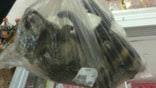 Supermarket under fire for selling whole frozen raccoons