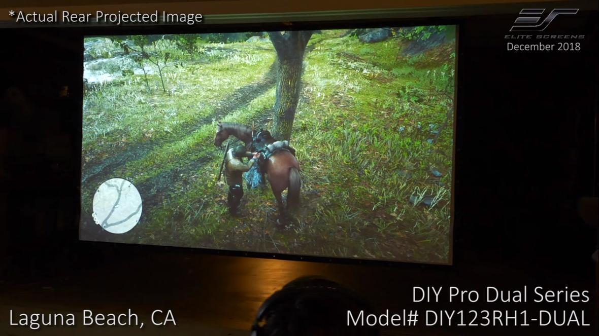 DIY Pro Dual Video Photo.