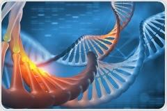 What is Functional Genomics?