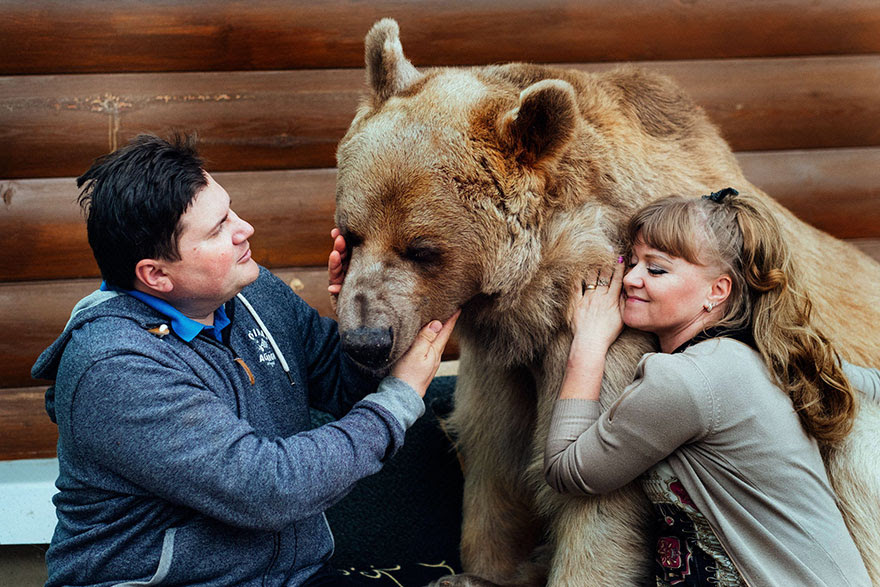 http://www.boredpanda.com/adopted-bear-russian-family-stepan/?image_id=adopted-bear-russian-family-stepan-a4.jpg