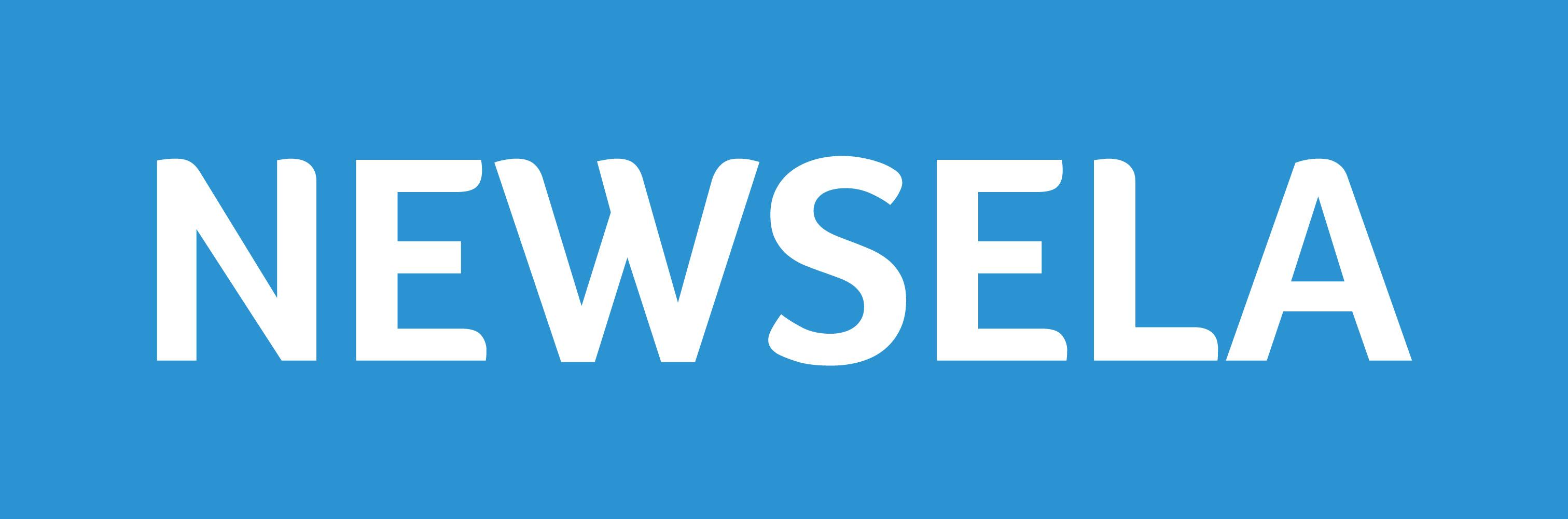 Image result for newsela logo
