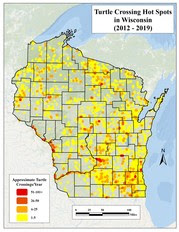 Wisconsin Turtle Conservation Program Turtle Crossing Hot Spot Map