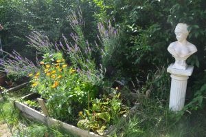 summer garden abundance