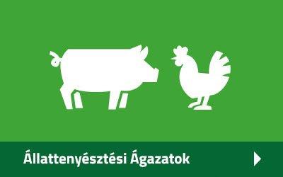Állattenyésztési Ágazatok