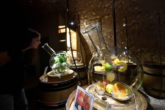 Découvrir le vignoble lors d'une visite olfactive à la tour du pouilly-fumé