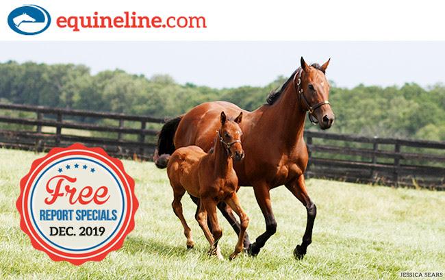 Equineline Free Report Specials