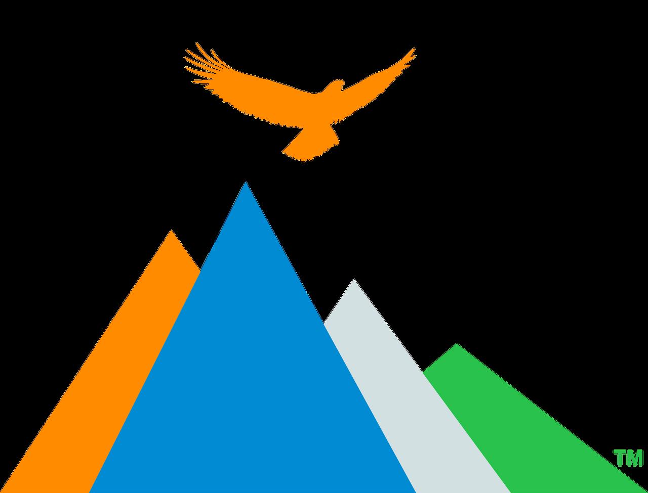 Freedom Focused logo