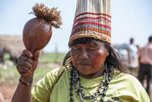 Os Guarani Kaiowá enfrentam violência brutal e o roubo de suas terras ancestrais, e sofrem com a maior taxa de suicídio do mundo.